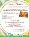 flyer_shishi_branch_january