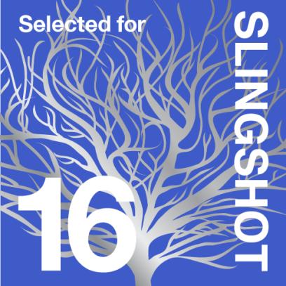 Slingshot-16-buttons-national-selected